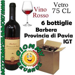 Barbera Provincia di Pavia IGT Vino Rosso 6 Bottiglie di Vetro da 75 Centilitri Giommy Bevande