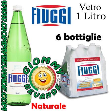 Fiuggi Acqua Naturale 6 Bottiglie di Vetro da 1 Litro Giommy Bevande
