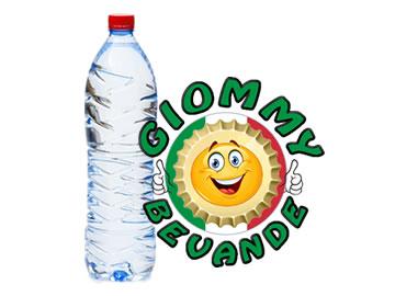La Storia della Bottiglia di Plastica Giommy Bevande