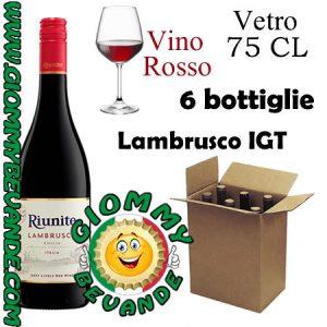 Lambrusco IGT Vino Rosso 6 Bottiglie di Vetro da 75 Centilitri Giommy Bevande