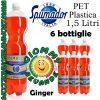 Spumador Ginger Bibita Gassata 6 Bottiglie di Pet Plastica da 1.5 Litri Giommy Bevande